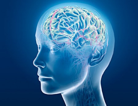 Czy gadżety zastępują mózg?