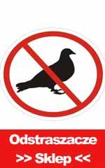 odstraszacz ptakow