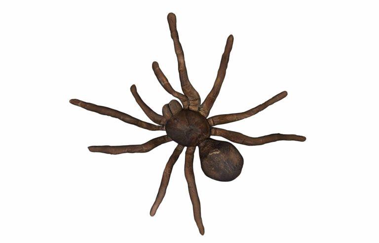 odstraszacze pajakow opinie
